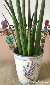 Schrumpffolie Buchstaben Anleitung rundkariert ruka diy grünpflanze