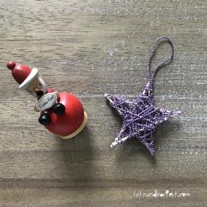 Weihnachtsstern2
